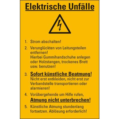 Aushang Elektrische Unfälle, Folie selbstklebend, 300x200 mm | hein.eu